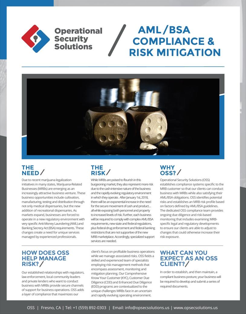AML/BSA Compliance